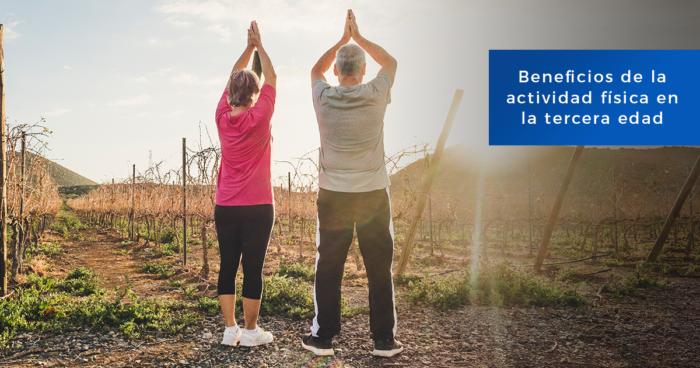 Adultos mayores haciendo yoga para mantener buena salud
